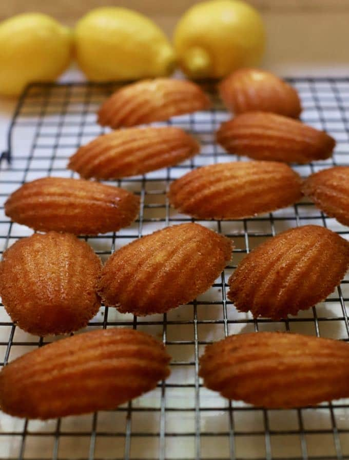 Madeleines just out of the oven cooling on a wire rack.