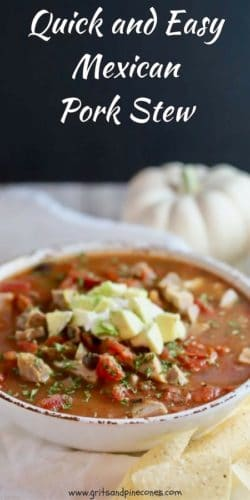 Quick and Easy Mexican Pork Stew