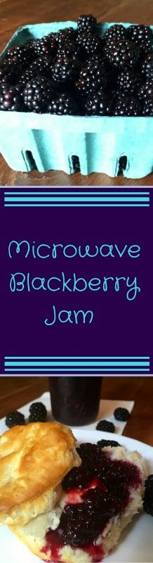 Microwave Blackberry Jam