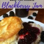 Ten Minute Microwave Blackberry Jam Pinterest Pin