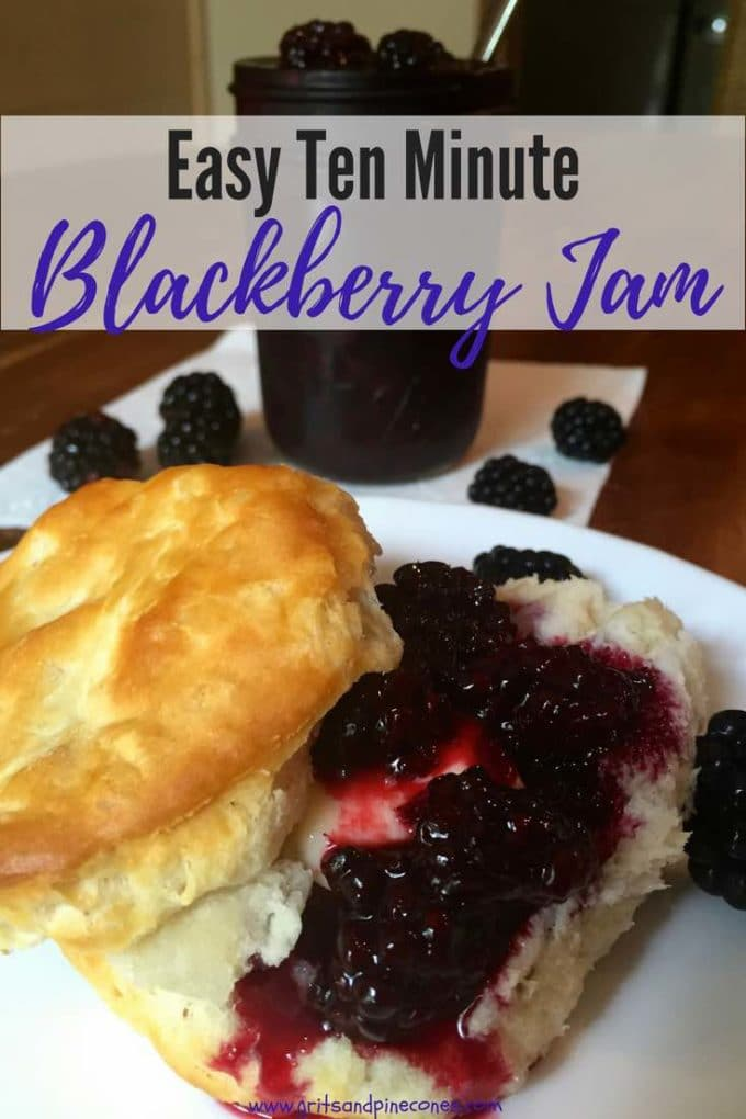 Ten Minute Microwave Blackberry Jam only takes 3 ingredients and 10 minutes, to make the most delicious, incredibly fast and easy Blackberry Jam you have ever tasted. This easy homemade, small batch recipe doesn't use pectin and can be stored in your fridge for up to a week.