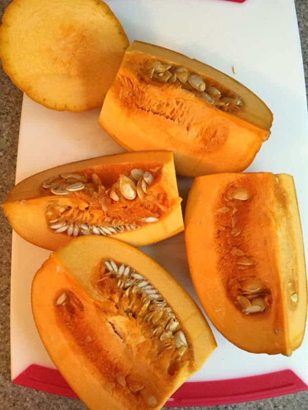 Fall Feast Roasted Pumpkin Soup 1