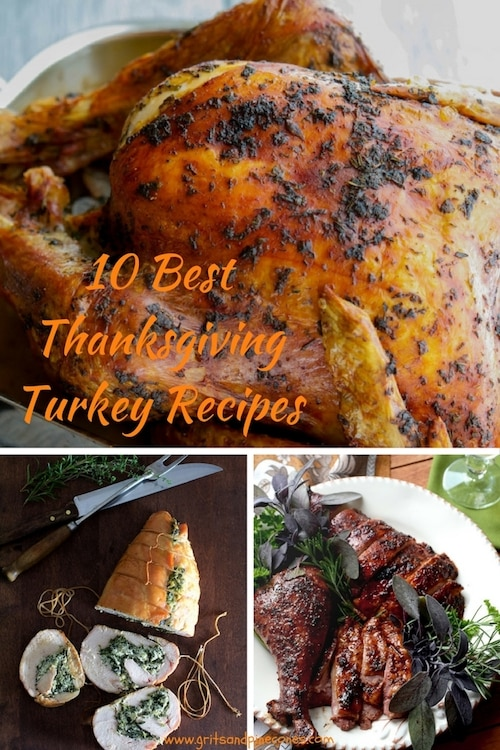 Check out these Ten Amazing Thanksgiving Turkey Recipes. Whether you want to roast it, bake it, fry it, or smoke it, these recipes will ensure this year's turkey is the star of the show!#thanksgivingturkey