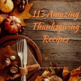 113 Amazing Thanksgiving Recipes