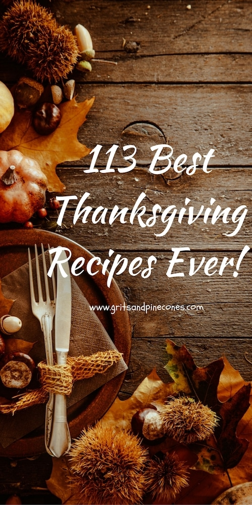 113 Best Thanksgiving Recipes is a one-stop resource for every recipe you could ever need to pull off the most amazing Thanksgiving Dinner ever!  Bon Appetit!