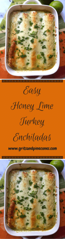 Are you wondering what to do with all of your Thanksgiving leftovers? Why not try something new this year, a surprising twist on a Cinco D'Mayo favorite? www.gritsndpinecones.com