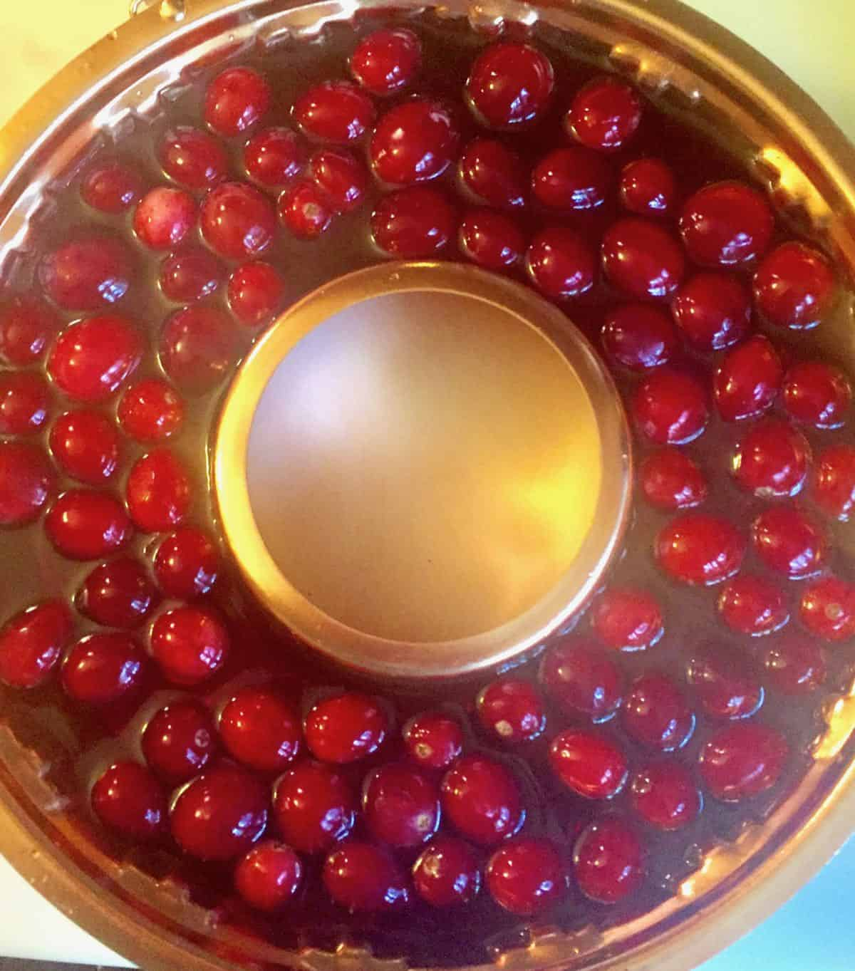 An ice ring with cranberries and cranberry juice.