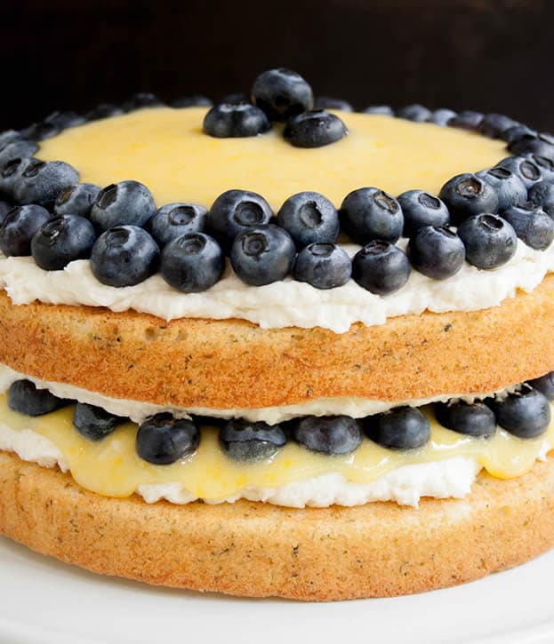 A two layer white cake topped with whipped cream and blueberries.