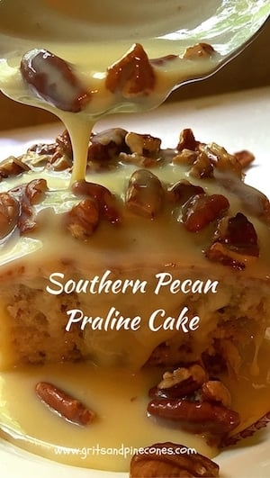 Southern Pecan Praline Cake is about as southern as you can get.  If you like pecans and pralines you will love this easy to make, decadent and delicious cake.