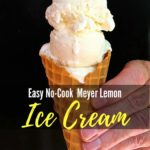 Easy No Cook Meyer Lemon Ice Cream Pinterest Pin