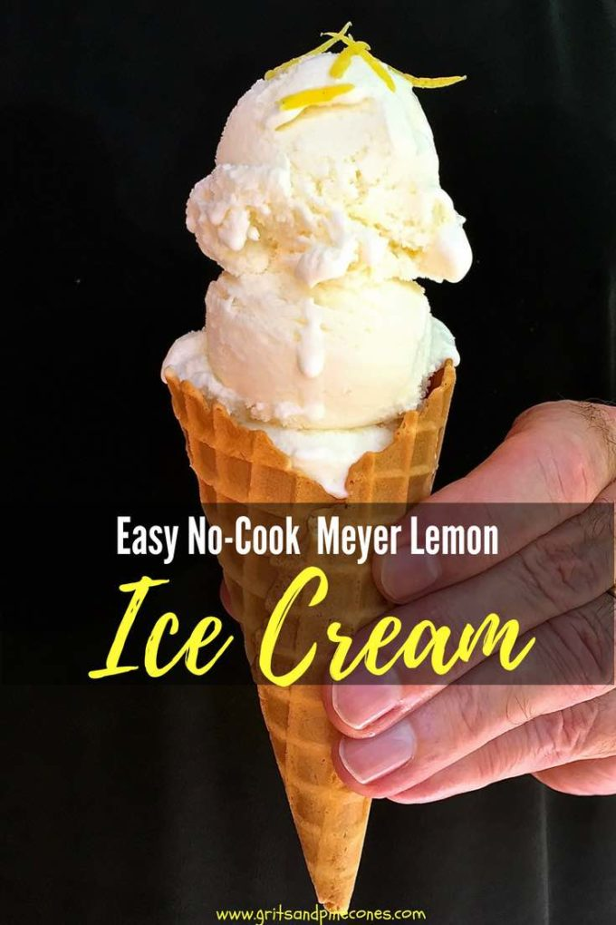 Looking for something to beat the summer heat? How about my Easy No-Cook Meyer Lemon Ice Cream recipe! This homemade silky smooth and lemony ice cream is just the thing to help you cool off on a hot summer day! #easyrecipe, #dessert, #dessertrecipe, #icecream