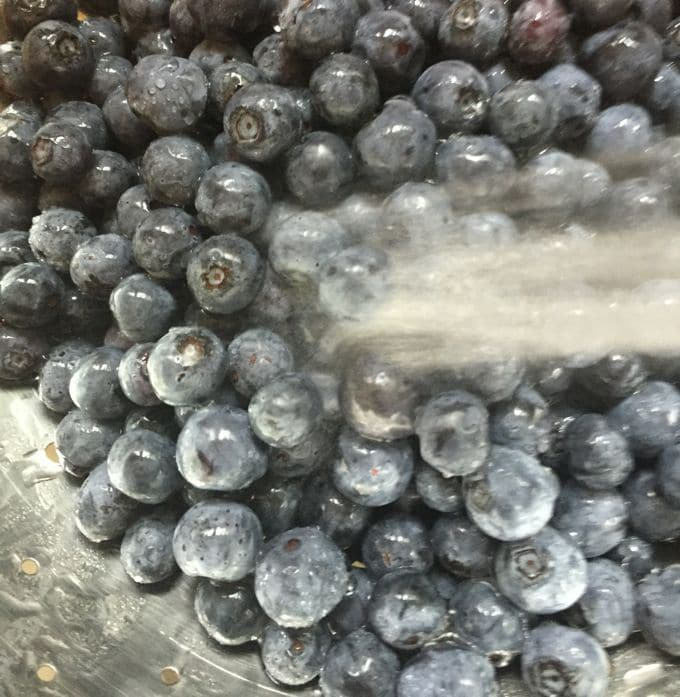 Washing blueberries for Red, White, and Blue No-Bake-Icebox Cake