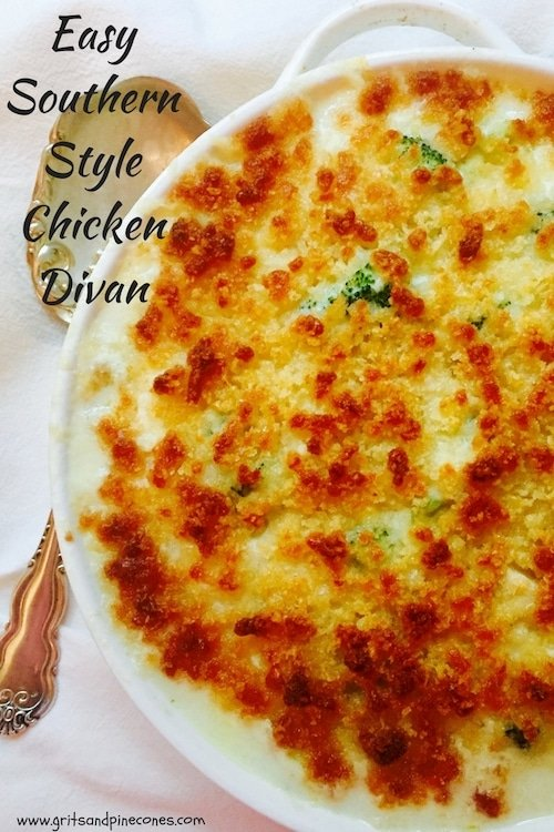 Easy Southern Style Chicken Divan is a flavorful chicken and broccoli casserole covered in a bechamel sauce made with white cheddar cheese and tangy sour cream.