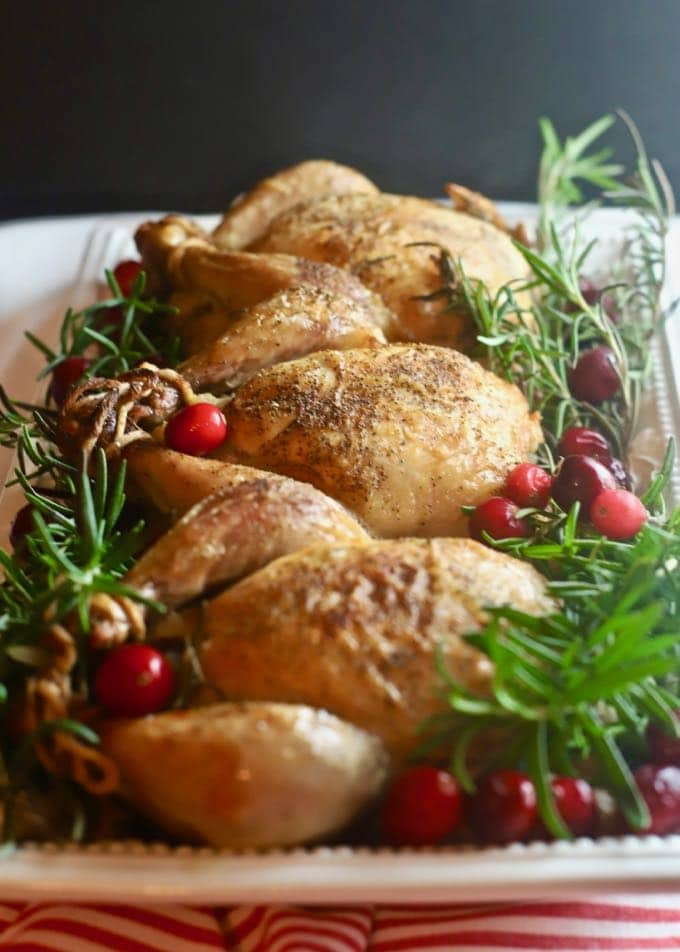 Cornish Game Hens with Cranberry Stuffing perfect for a festive Christmas dinner