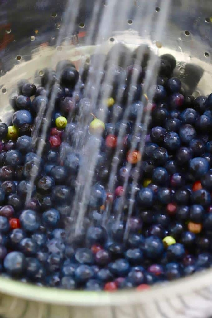 Washing blueberries for Red, White, and Blue Summer Fruit Salad
