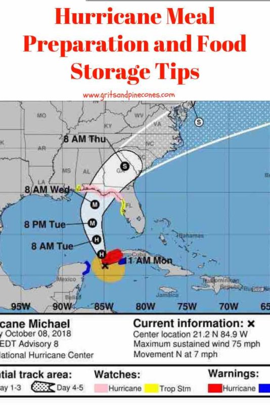 Hurricane Preparation Meal Ideas and Food Storage Tips, Pinterest pin