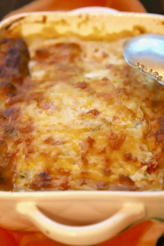 Enchiladas in a baking dish topped with melted cheese right out of the oven.