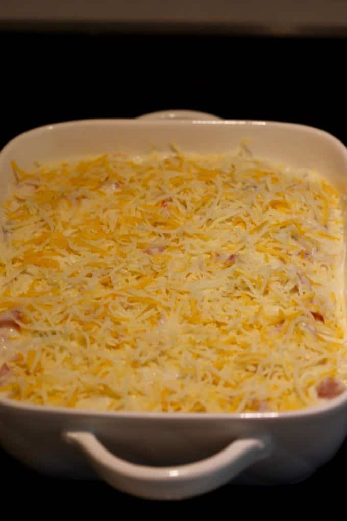 Enchiladas in a baking dish tipped with cheese ready for the oven.