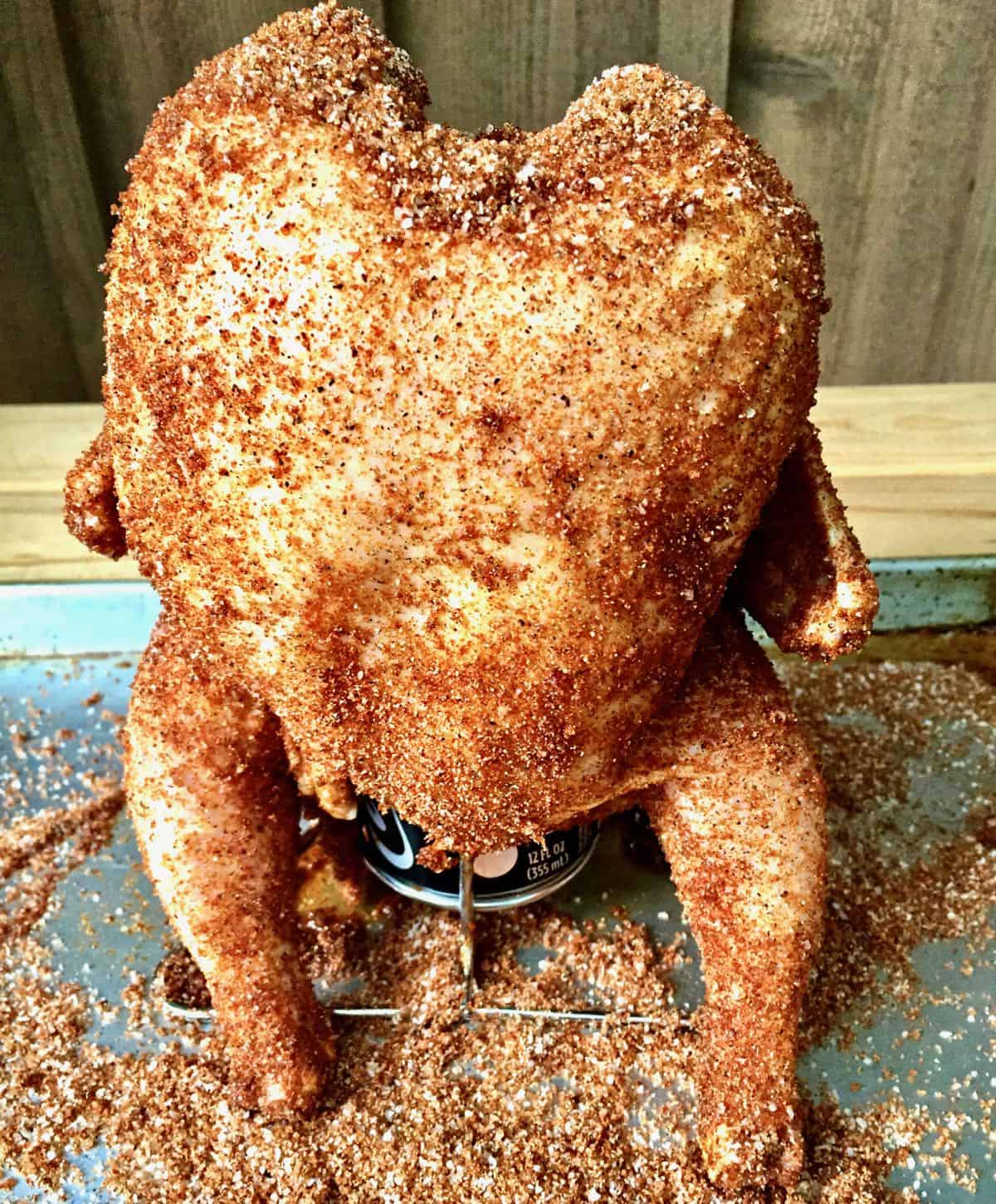 Poultry sitting upright on a beer can covered with a savory rub.