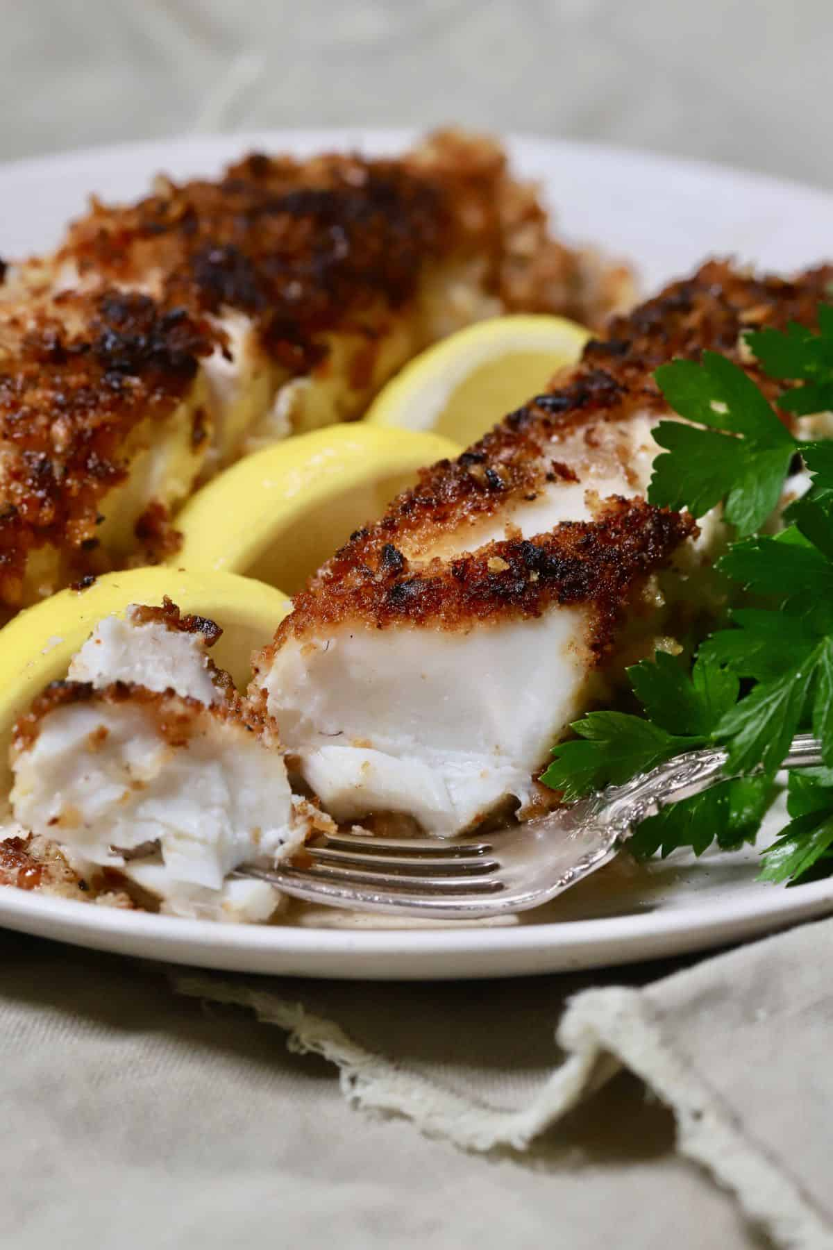 Two fish fillets coated with pecans and panko on a plate.