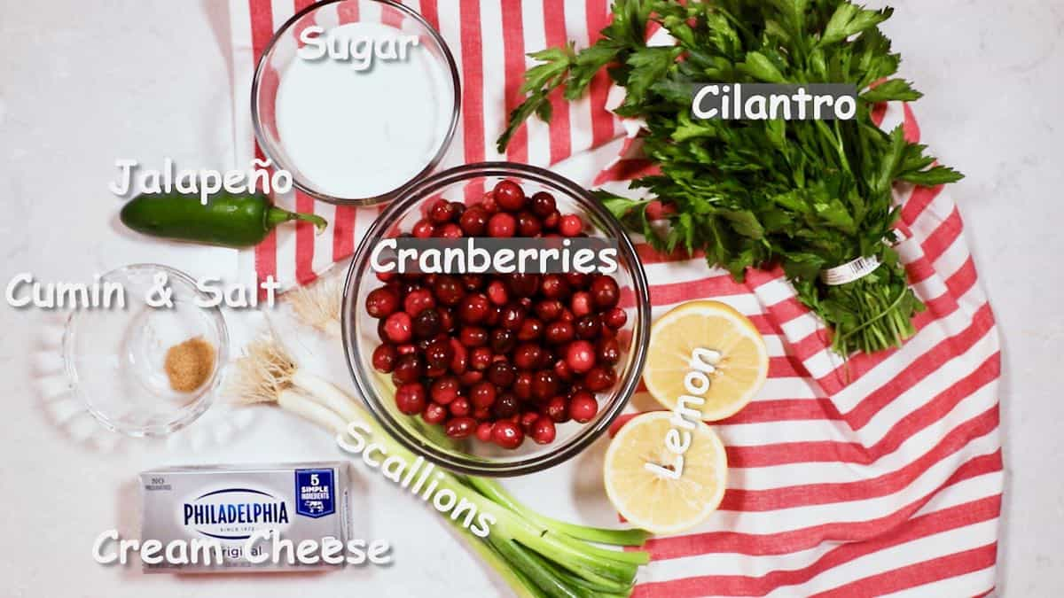 Ingredients for a dip including cranberries and jalapenos.
