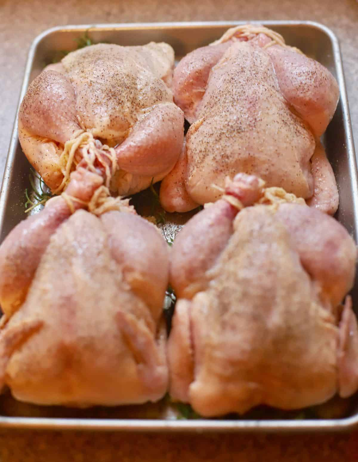 Four Cornish hens in a baking pan.